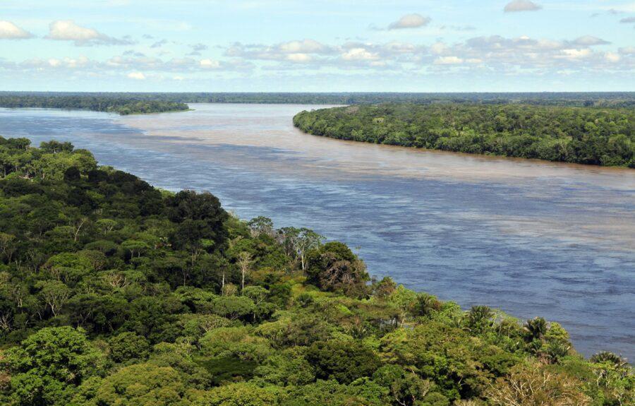 On voit un paysage de la forêt amazonienne, un fleuve sépare les forêts d'arbres.