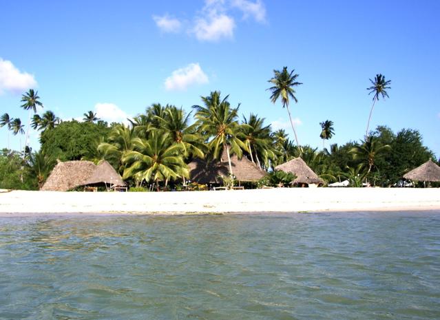 Une île avec des palmiers et des villas au bord de la plage en Tanzanie