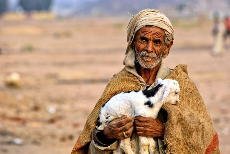 Un homme égyptien tient dans ses bras une petite brebis.
