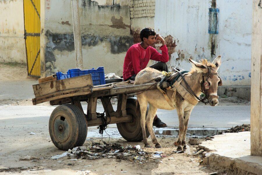Un homme est assis à côté de son âne.