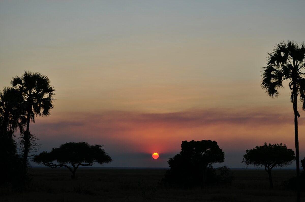 Un coucher de soleil lors d'un safari nocturne