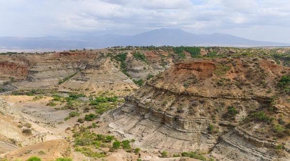 Les gorges d'Oldupai aperçues lors d'un safari
