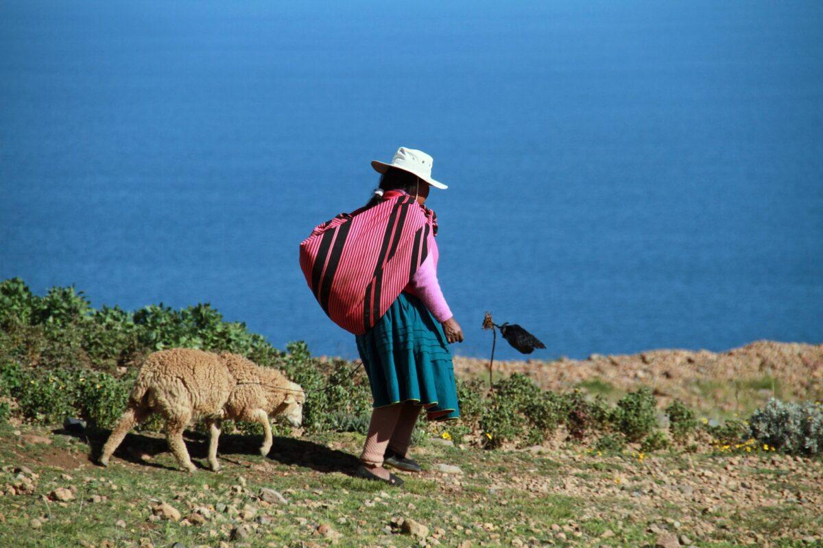 Les îles flottantes Uros à Puno