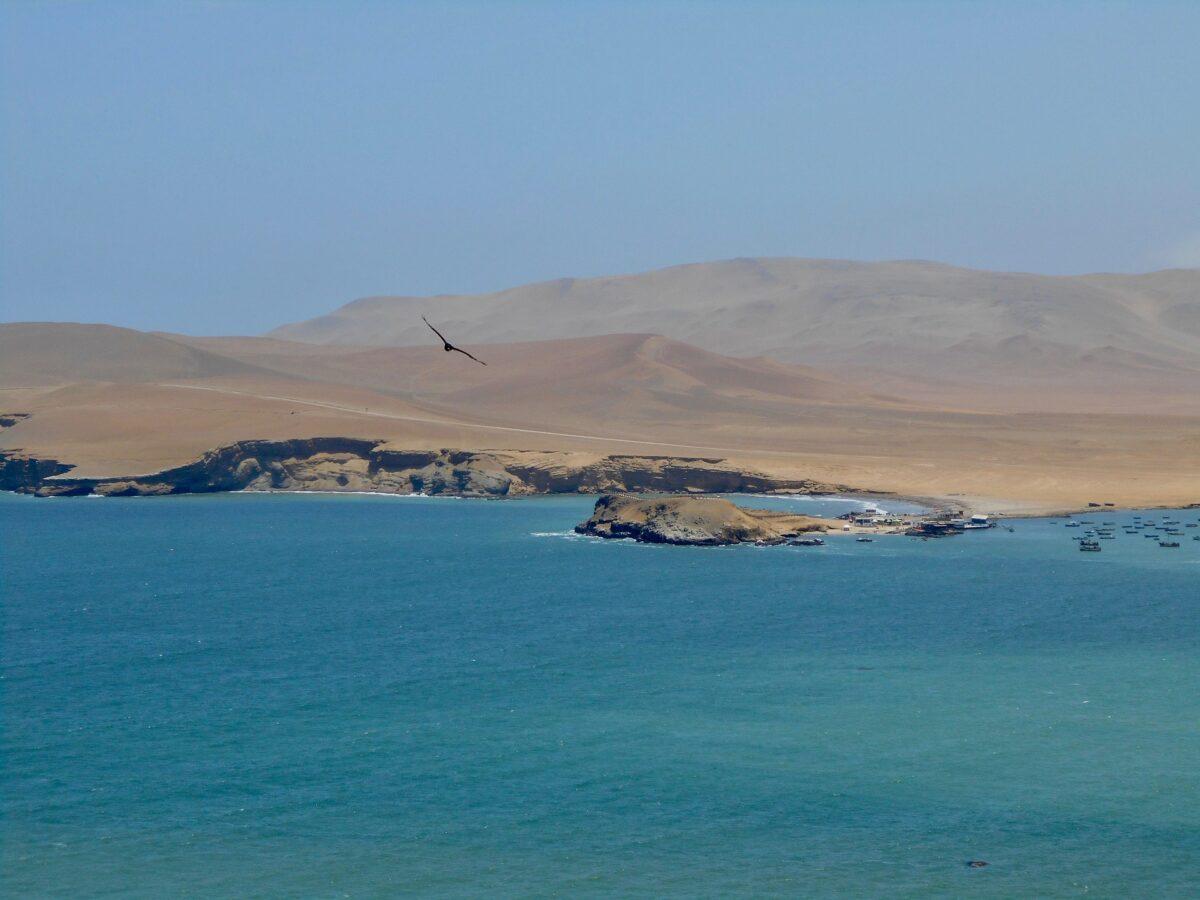 Le Pérou : Paracas