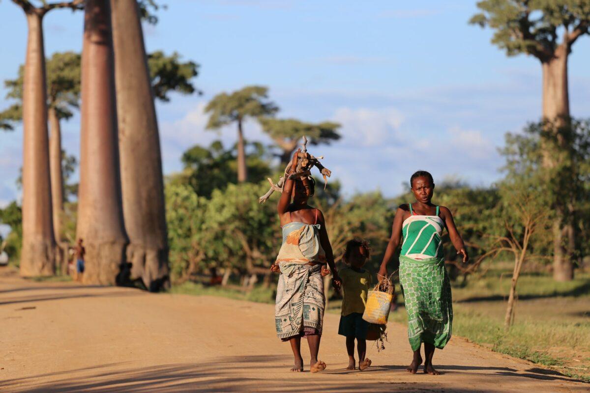 madagascar femmes qui marchent en tenue locale et qui portent des morceau de bois
