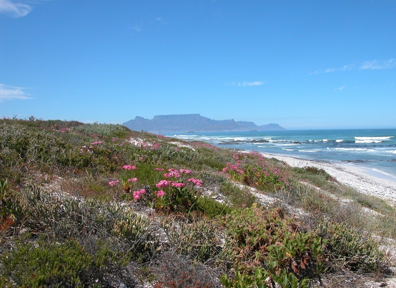 Blauuwberg south africa blog soguide top